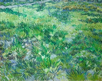Vincent van Gogh, Hohes Gras mit Schmetterlingen, 1890, National Gallery London © starkandart.com