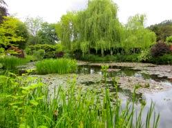 Impressionen aus Monets Garten in Giverny © starkandart.com